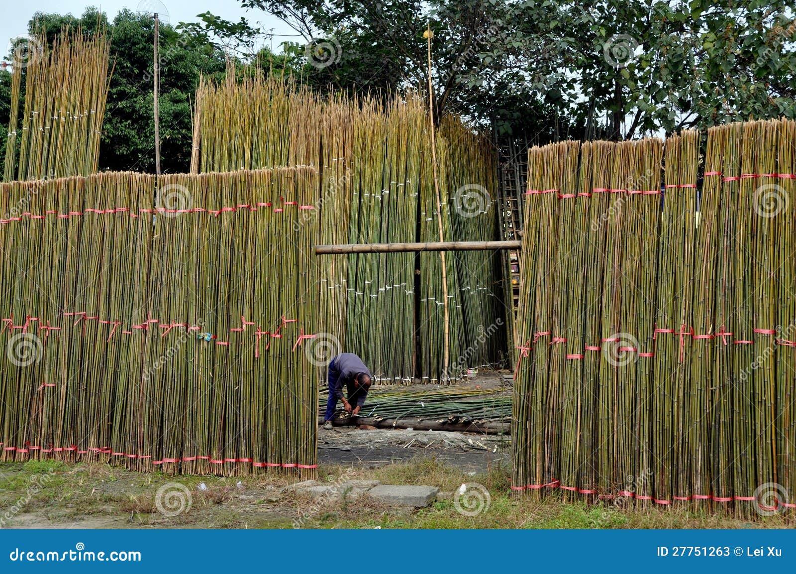 Chi de Jiu, Chine : Homme empaquetant le bambou