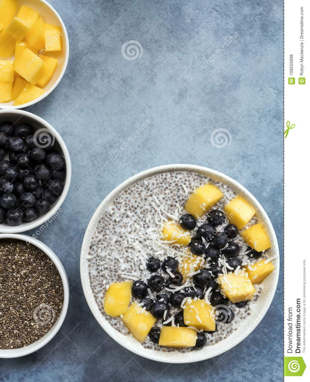Chia Seed Pudding Top View with Blueberries Mango and Coconut