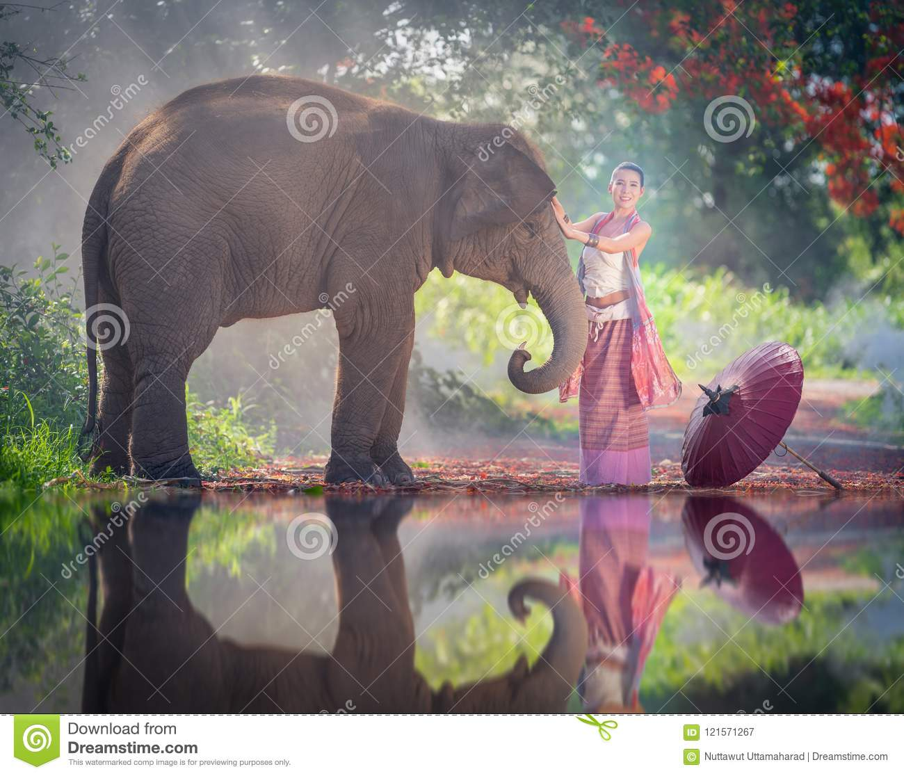 Chiang Mai, Thailand-May 13,2018: Young Asian Woman wearing Lanna traditional style costume with elephant in Chiang Mai, Thailand.