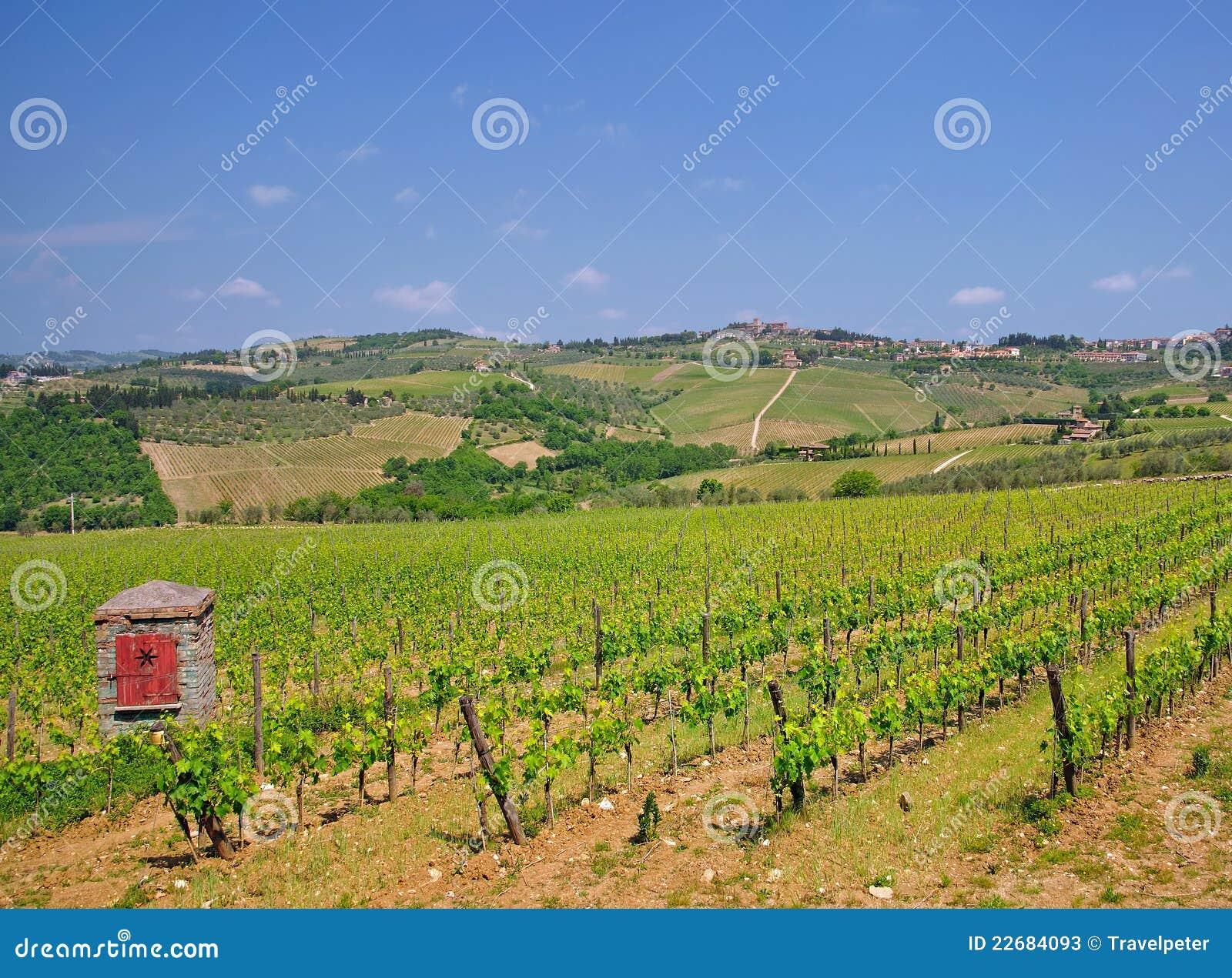 Chianti意大利路托斯卡纳酒