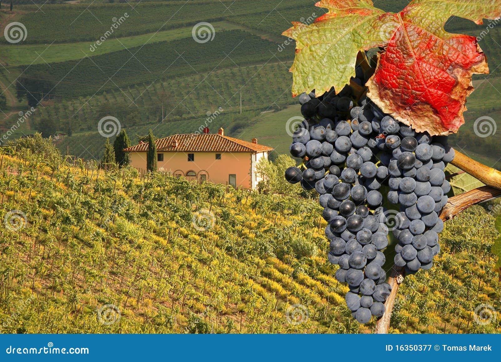 Chianti italy tuscany
