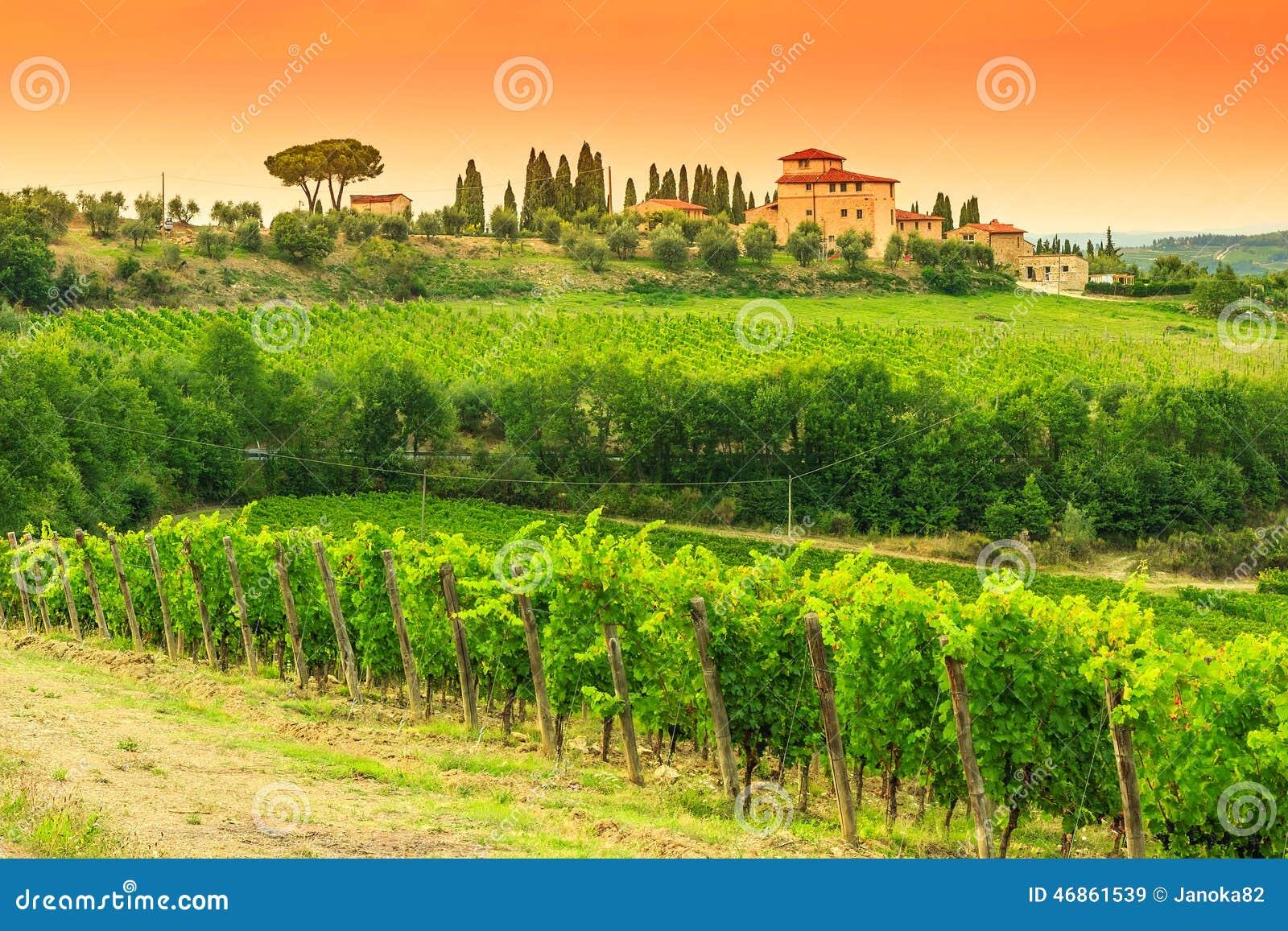 Chianti winnicy krajobraz z kamienia domem w Tuscany