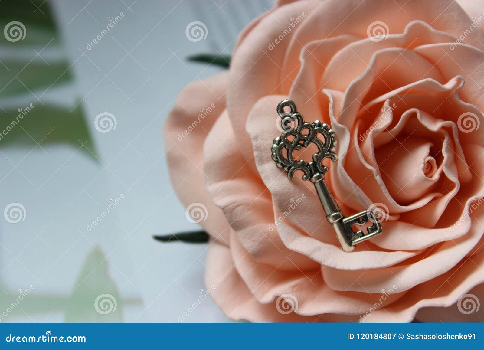 Chiave d argento d annata sul germoglio rosa, retro stile d annata, fuoco selettivo