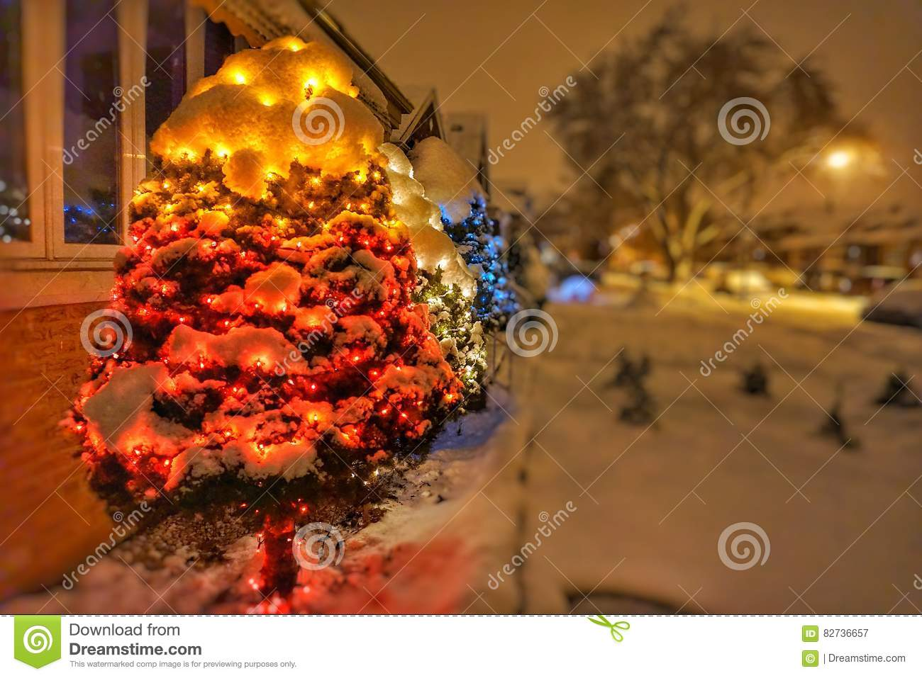 Download Chicago Christmas Lights In A Trees Stock Image   Image Of  Christmas, Lights: