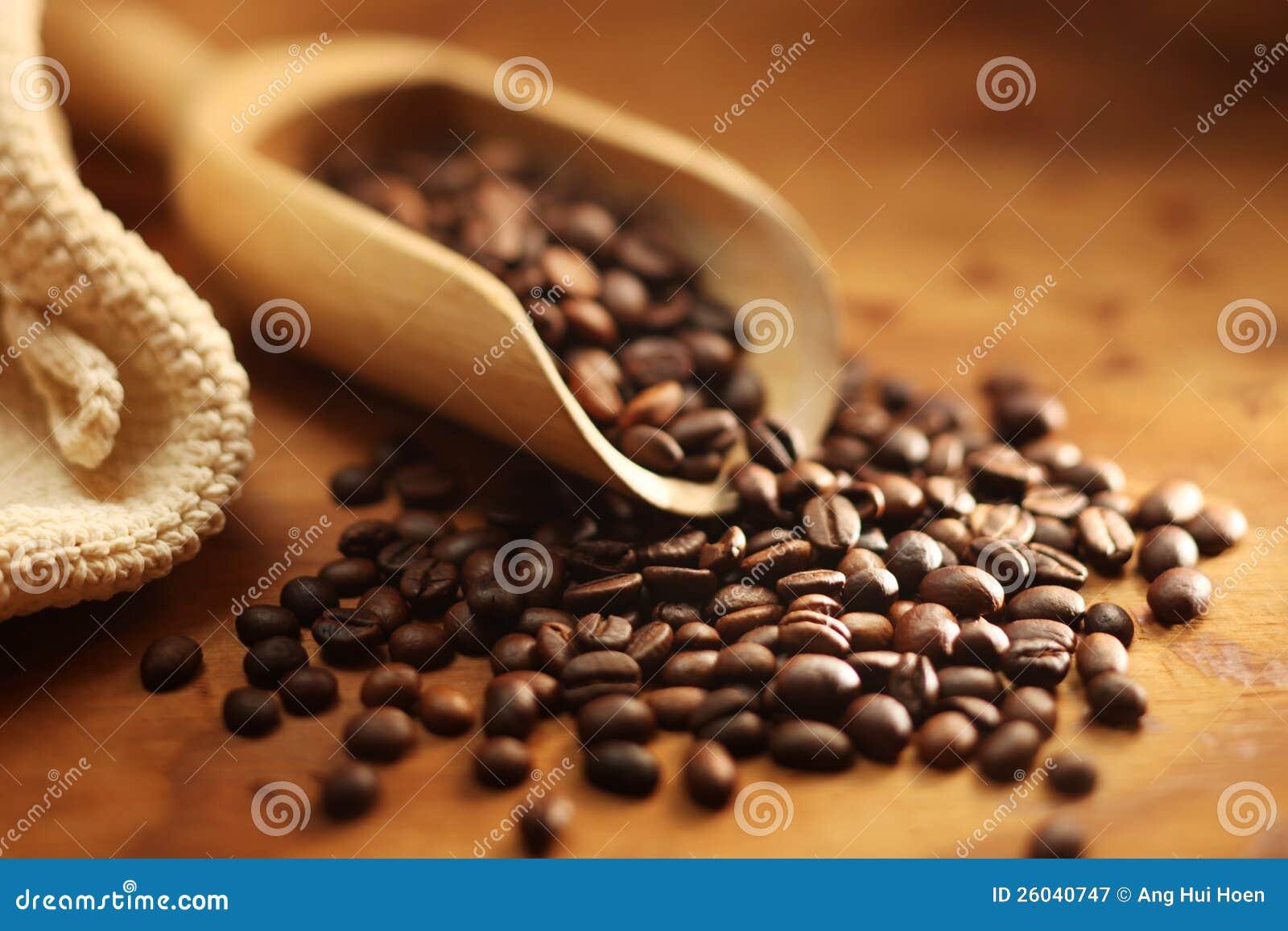 Chicco di caffè fresco
