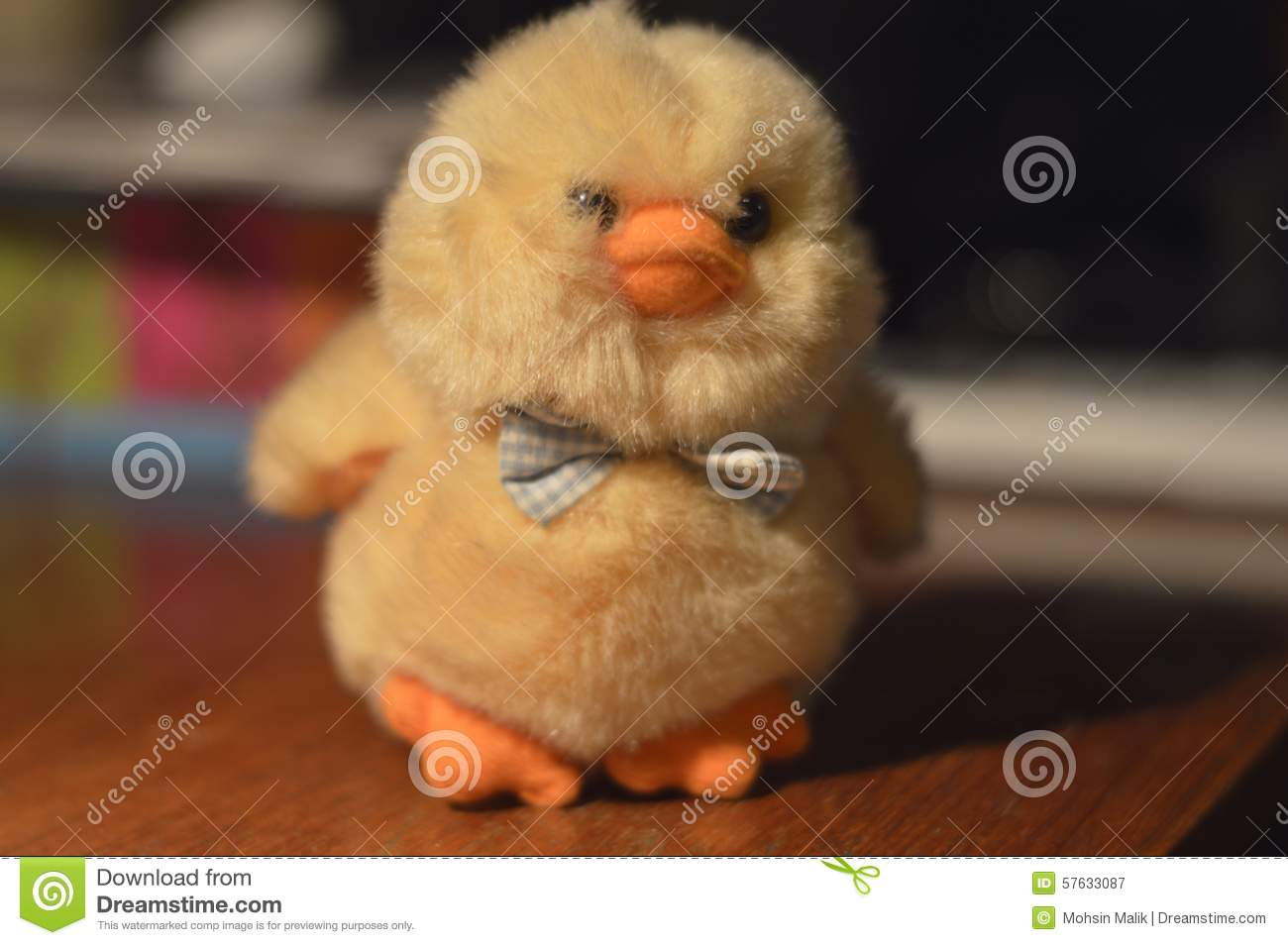Chick Stock Photo - Image: 57633087