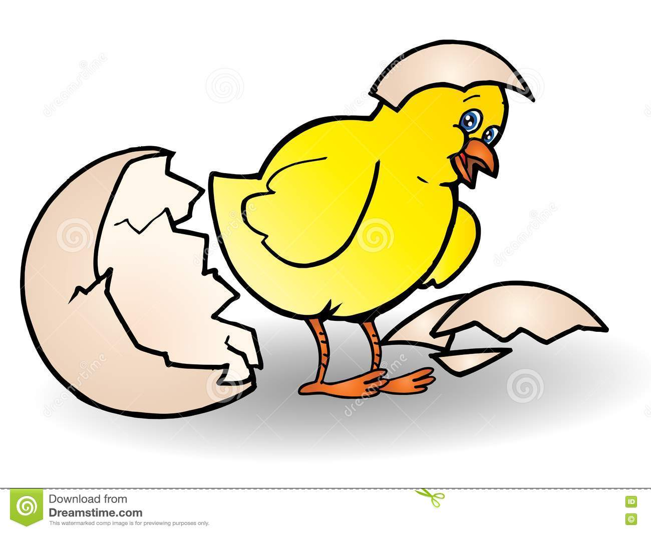 Chick Hatching Stock Photography - Image: 13756482: www.dreamstime.com/stock-photography-chick-hatching-image13756482