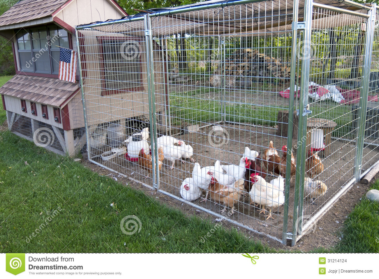 Chicken coop stock photo image of brown bird yard - Como hacer un gallinero ...
