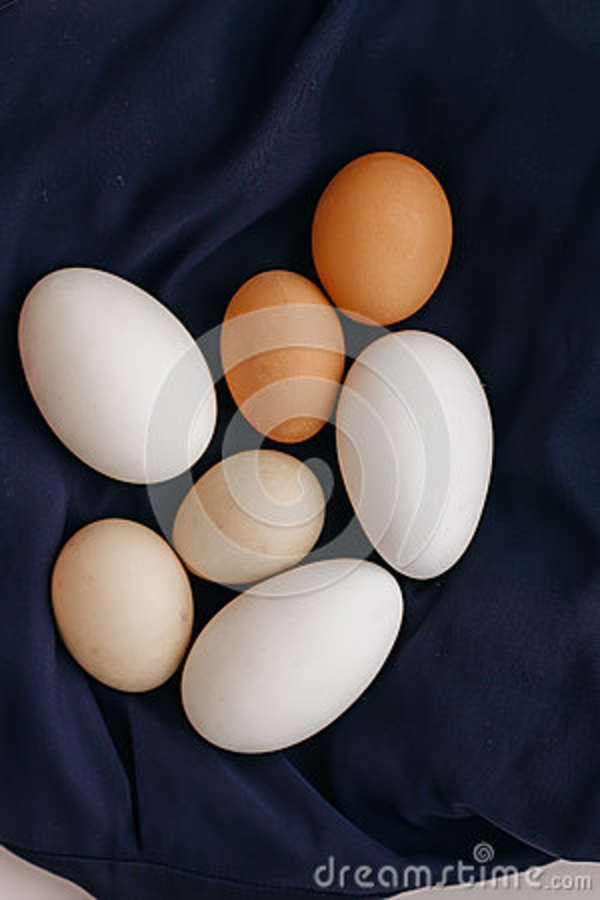 Chicken eggs on a blue napkin on a white table. view from above.