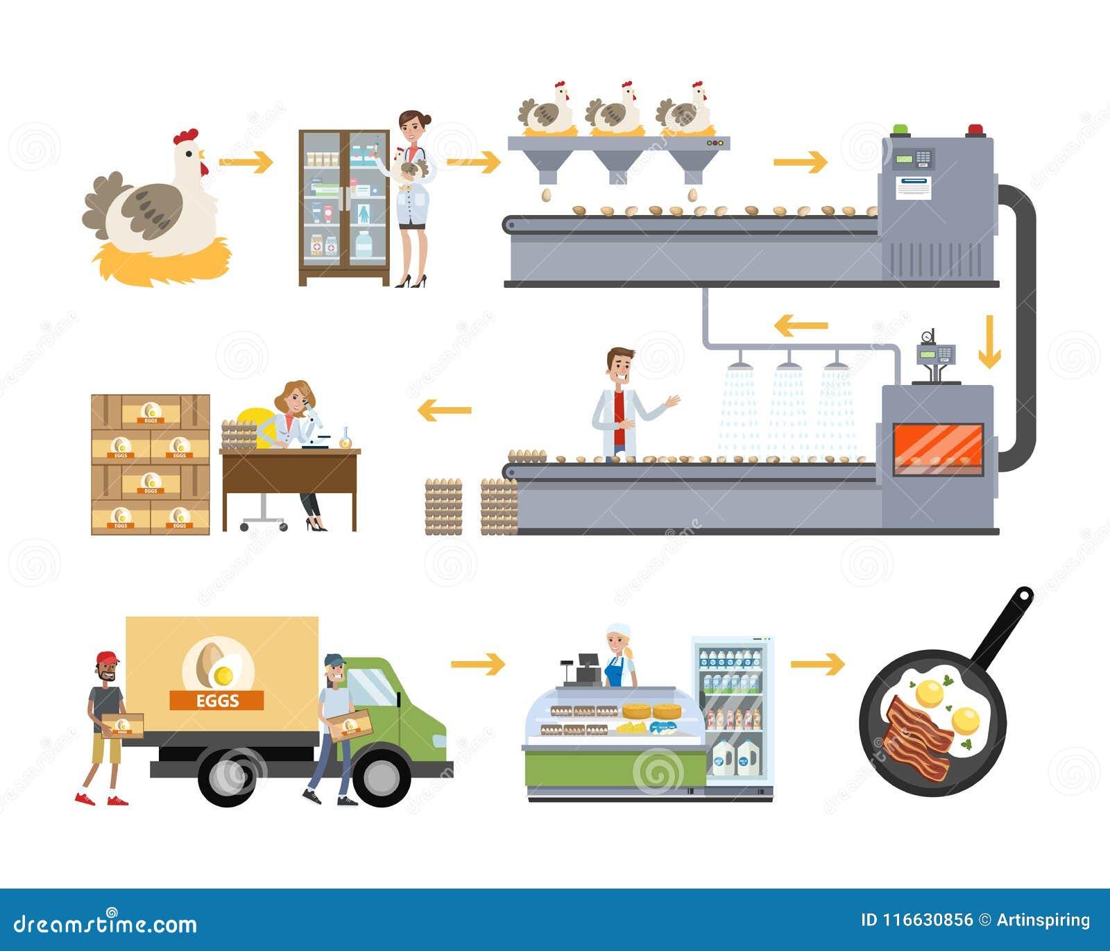Chicken factory set  stock vector  Illustration of cockerel