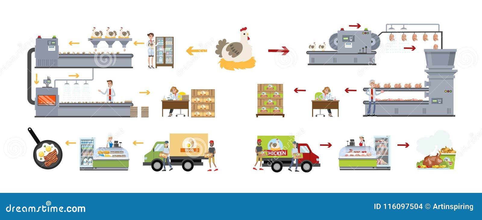 Chicken factory set  stock vector  Illustration of
