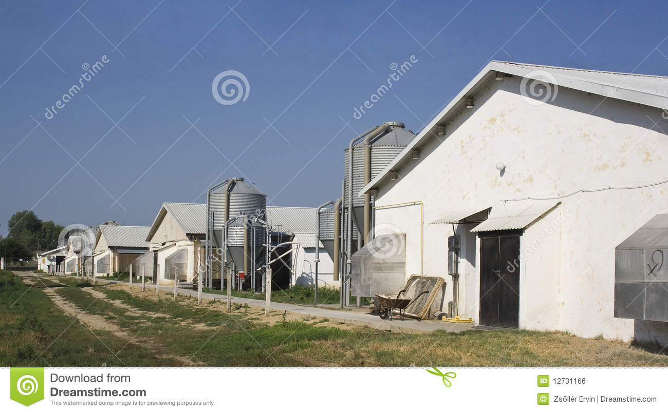 Chicken Farms And Silos Royalty Free Stock Image Image