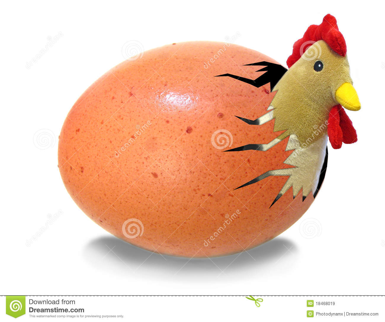 Chicken Hatching From Egg Royalty Free Stock Images
