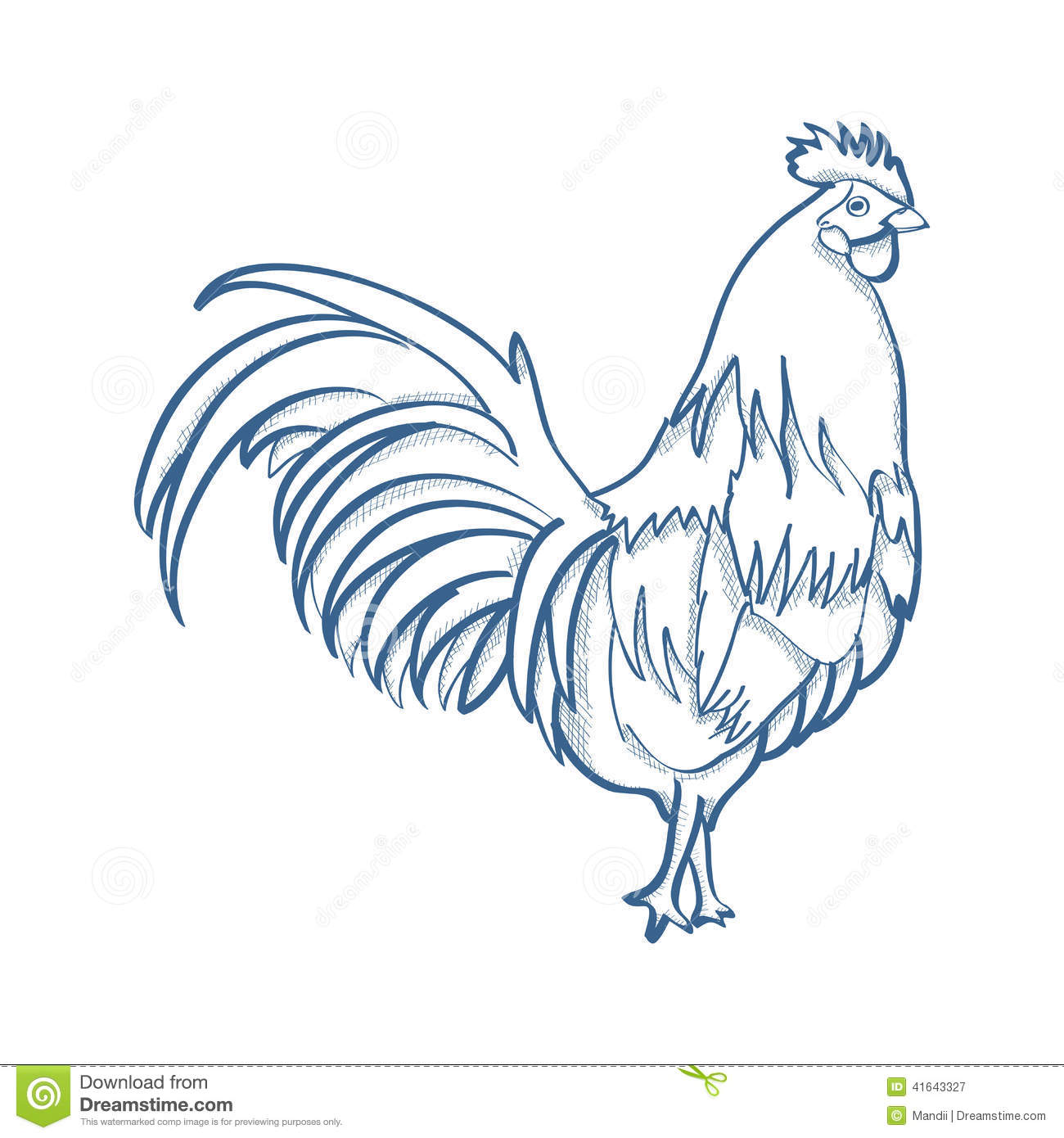 Line Drawing Chicken : Chicken stock illustration image
