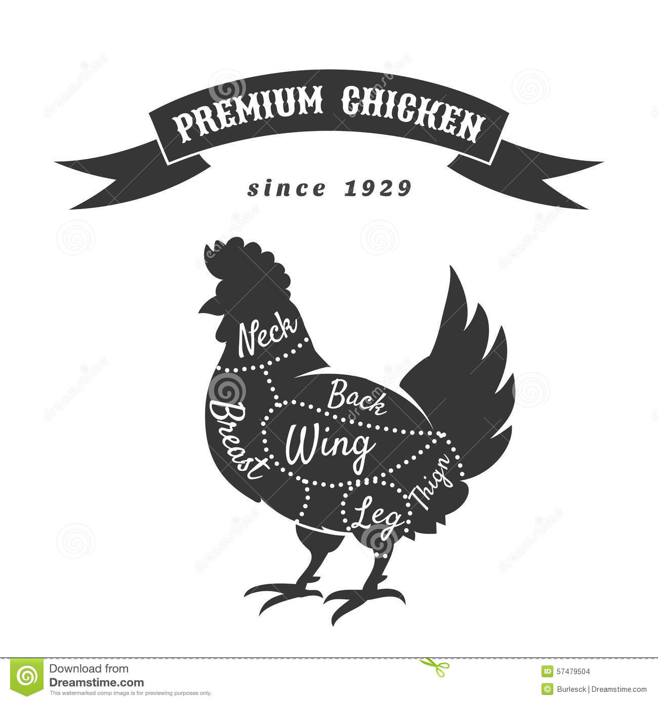 chicken meat cuts diagram stock vector  illustration of