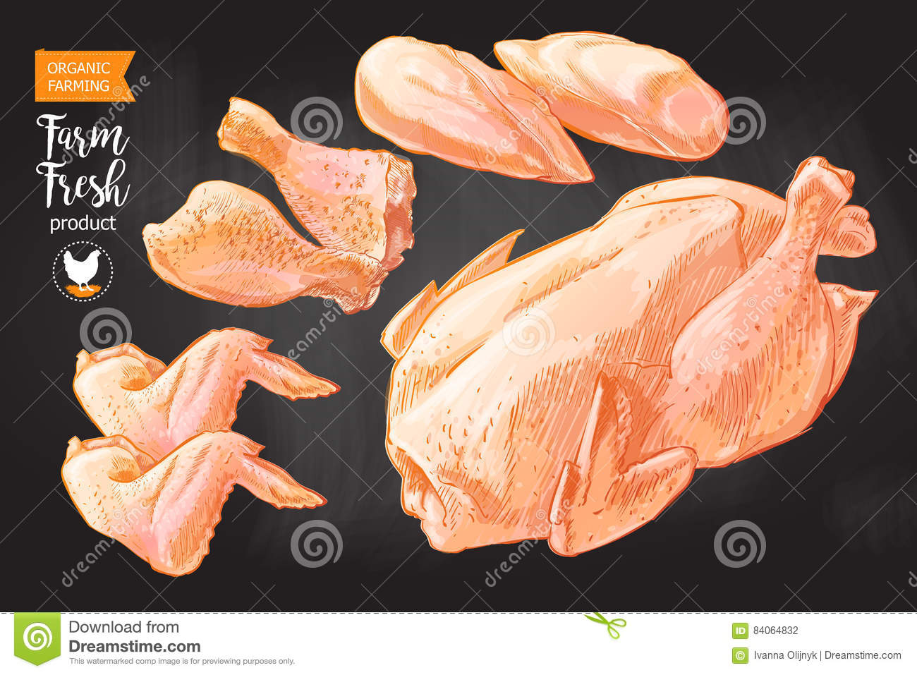 Chicken Meat Parts Fabulous Any Fleshy Are Covered With Of A Diagram Bone Free Stock For Xkb
