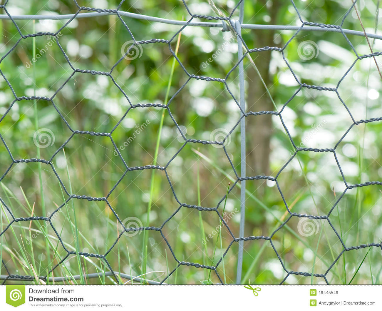 Chicken Wire Fence Stock Image Image Of Wire Background