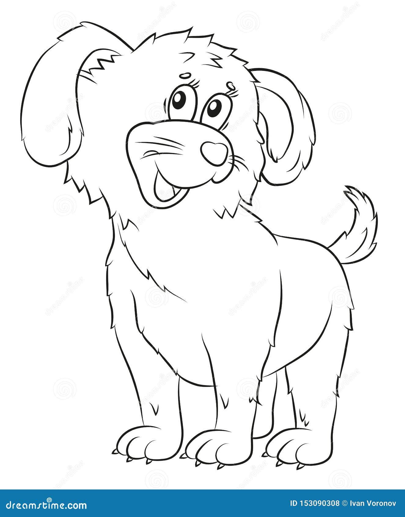 Chien, coloration, l image de l animal en noir et blanc