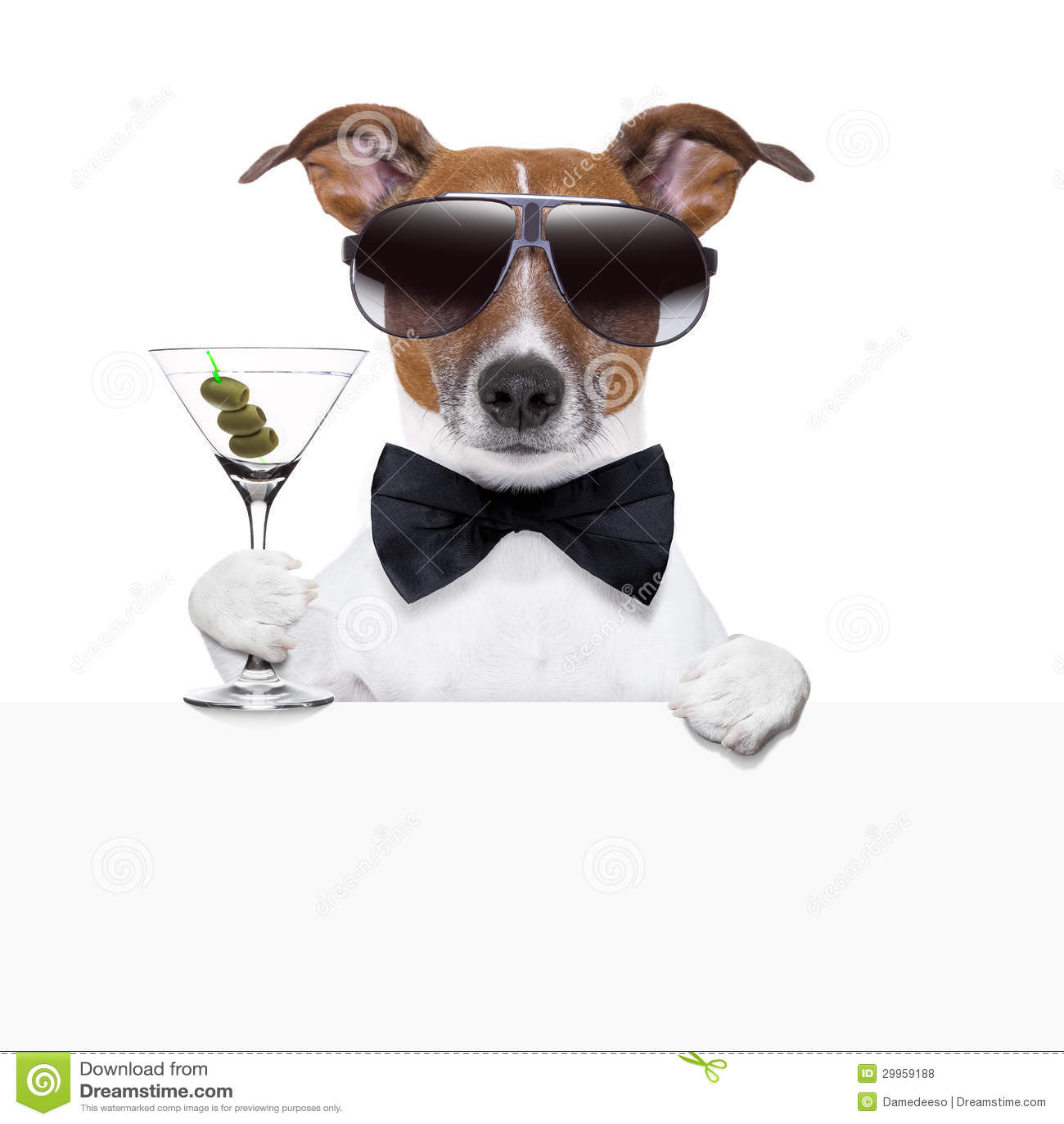 Bannière drôle de chien de cocktail