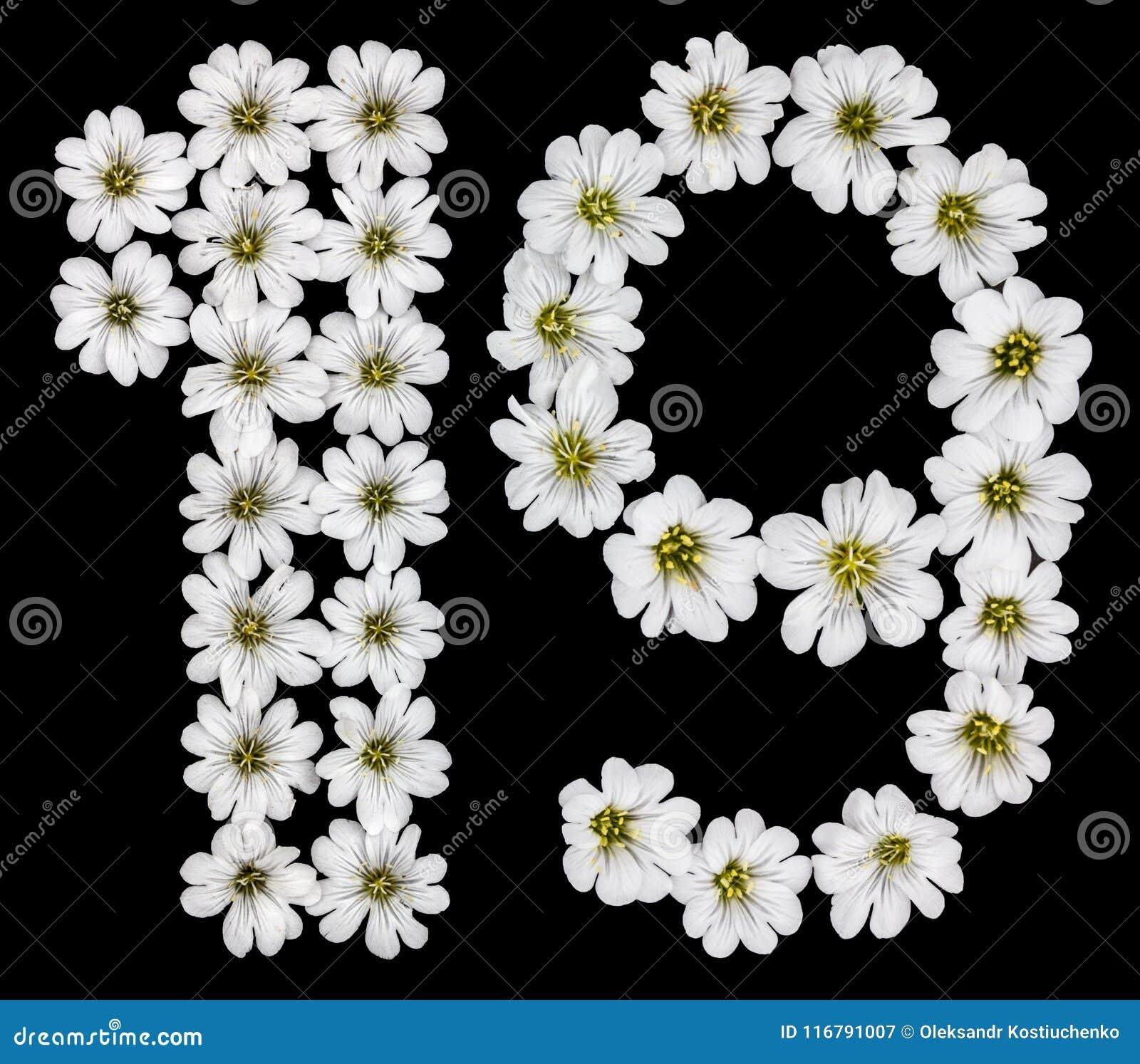 Chiffre arabe 19, dix-neuf, un, neuf, des fleurs blanches du ce