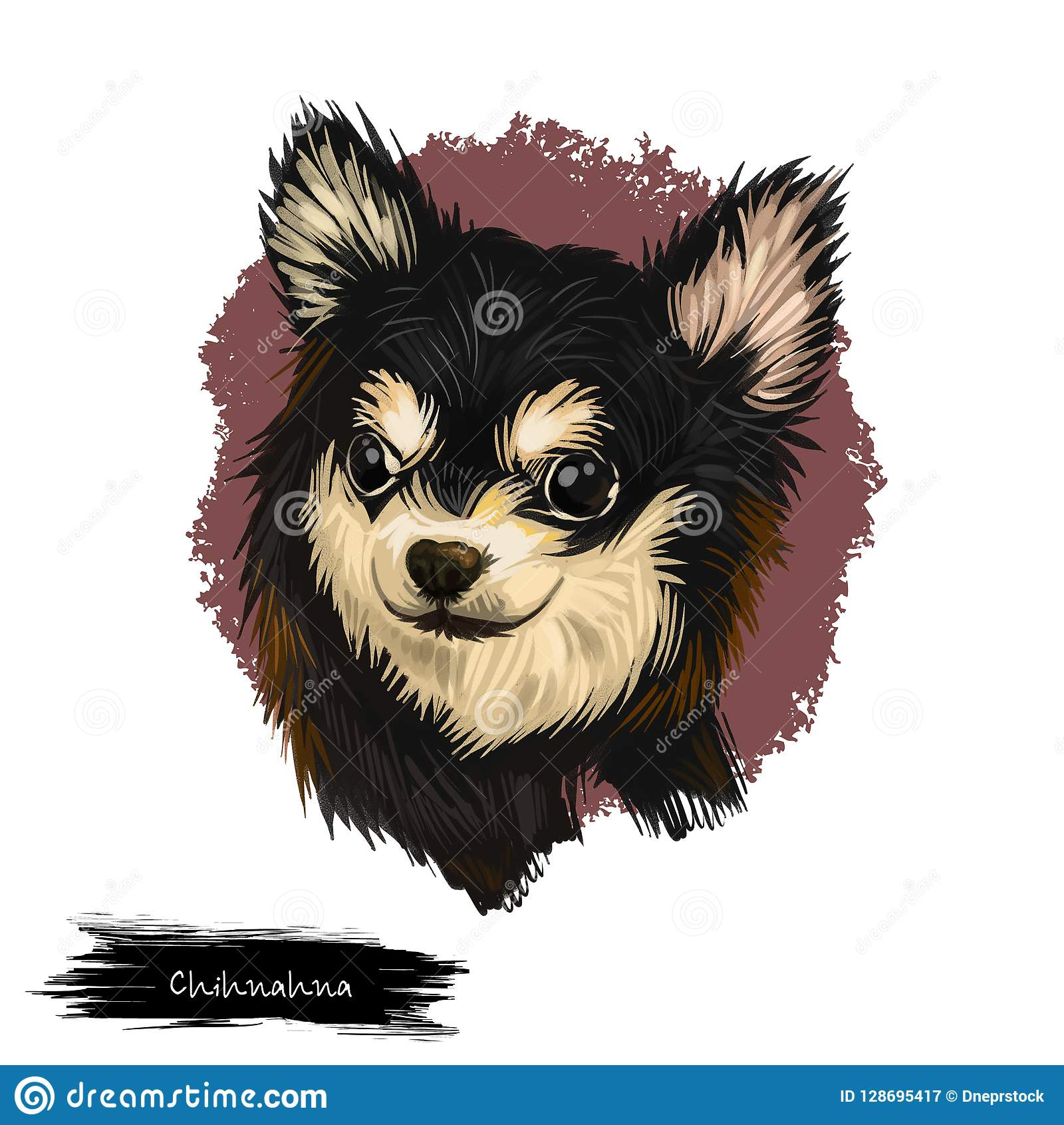 Chihuahua Dog Breed Isolated On White Background Digital Art