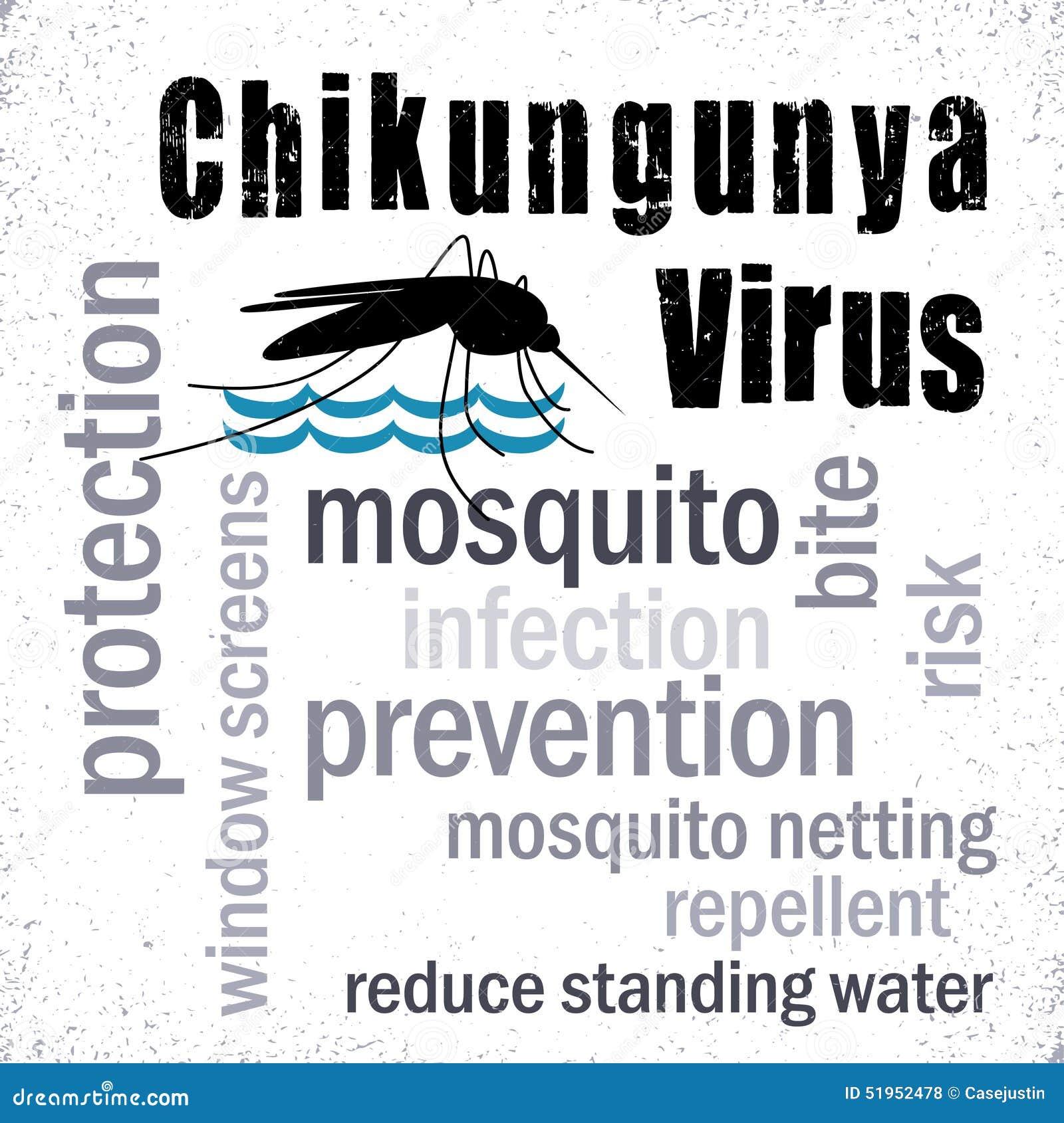 Viral Word: Chikungunya Virus, Mosquito, Word Cloud Stock Vector