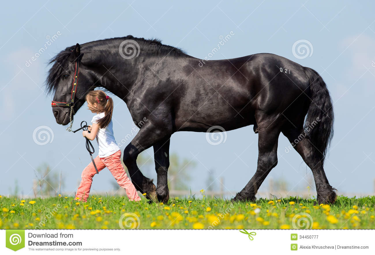 Child And Big Black Horse In Field Stock Image Image Of Friendship Horizontal 34450777