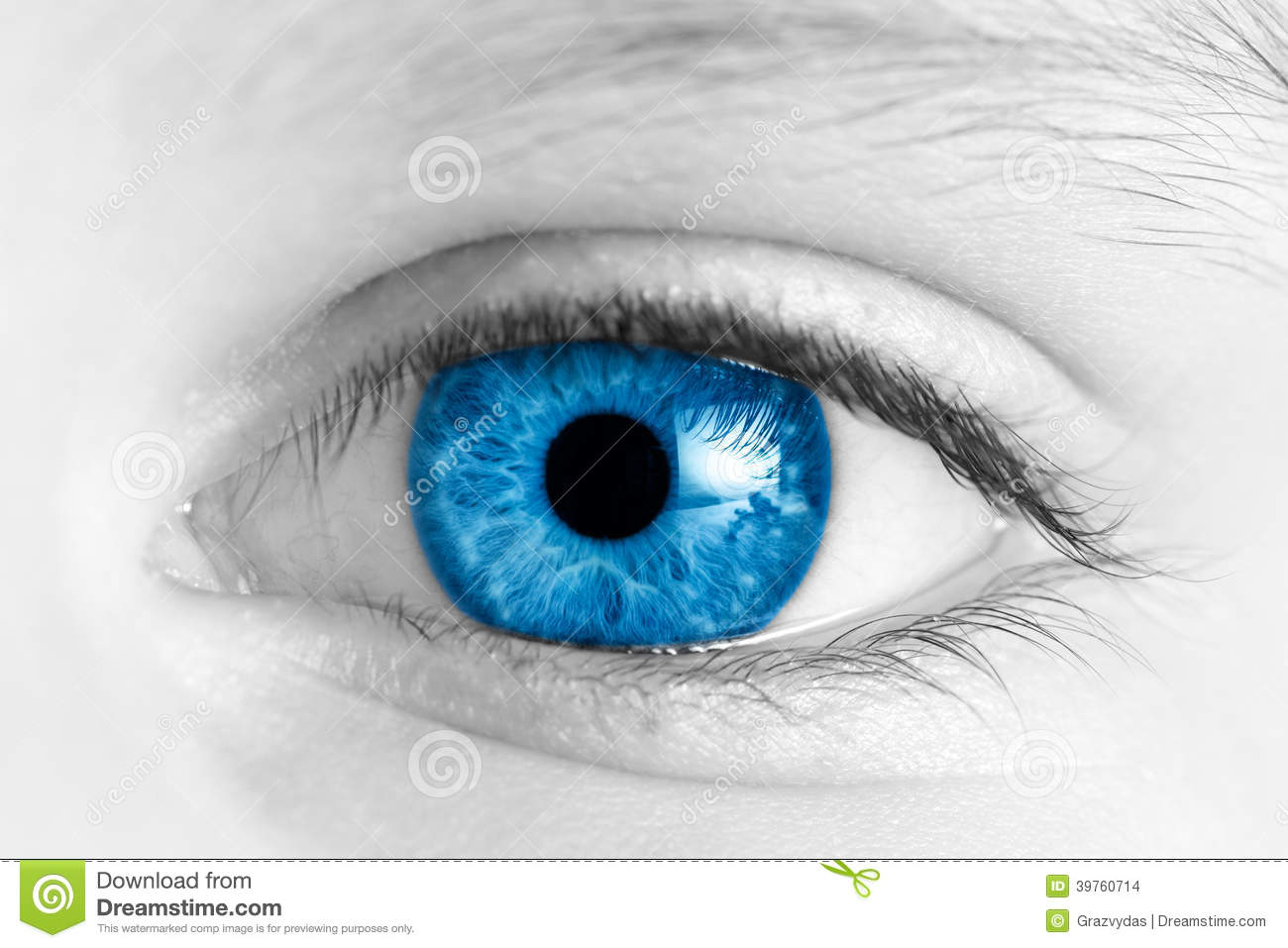 child blue eye stock photo image 39760714