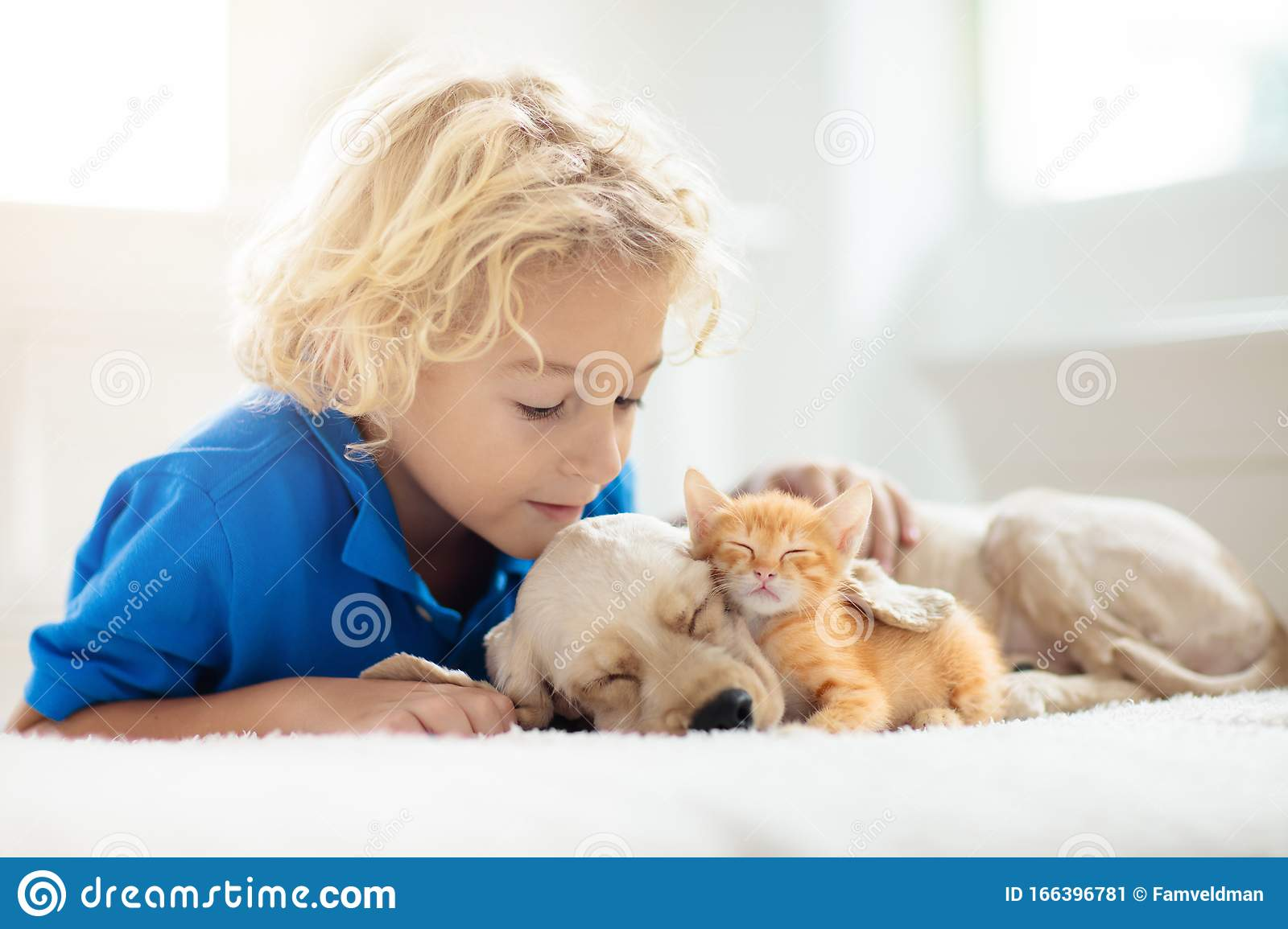 Child Dog And Cat Kids Play With Puppy Kitten Stock Image Image Of Love Pets 166396781