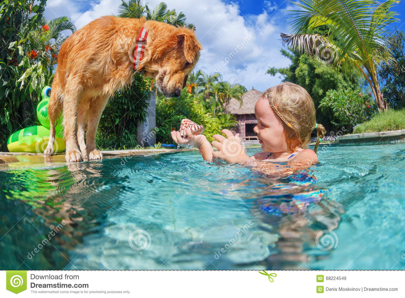 Child With Dog Dive Underwater In Swimming Pool Stock Photo Image 68224549