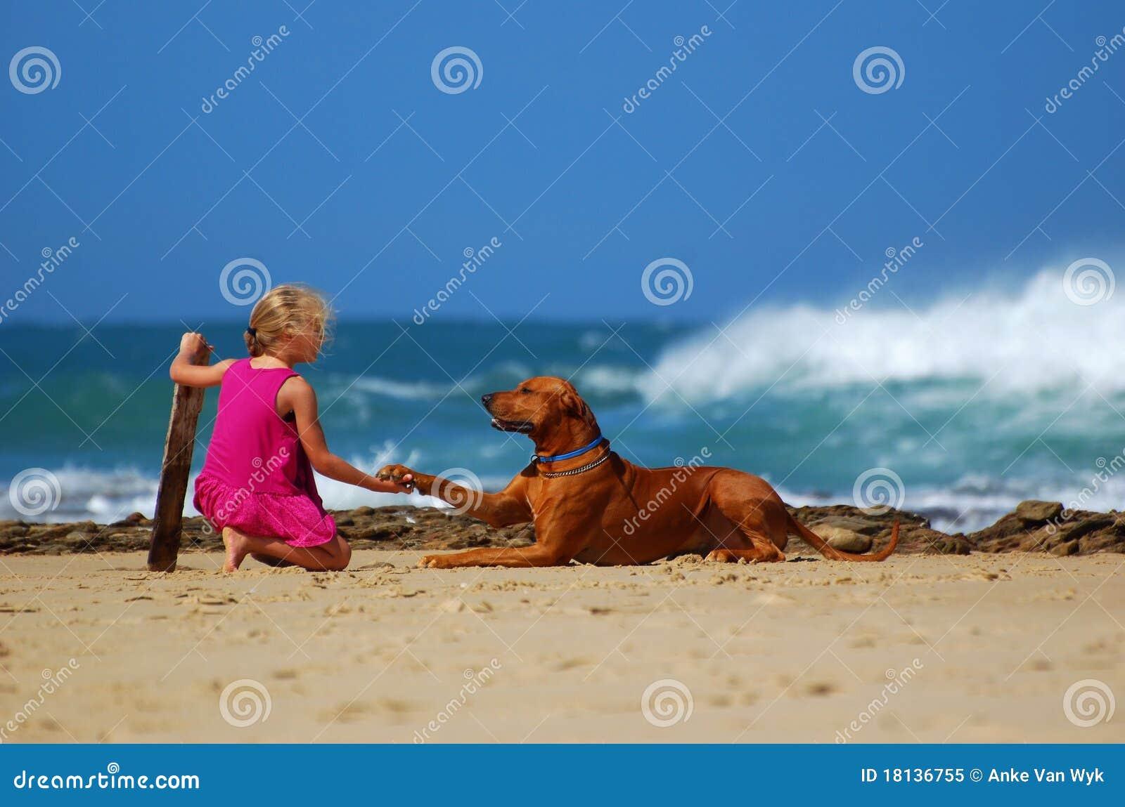 Child dog friendship