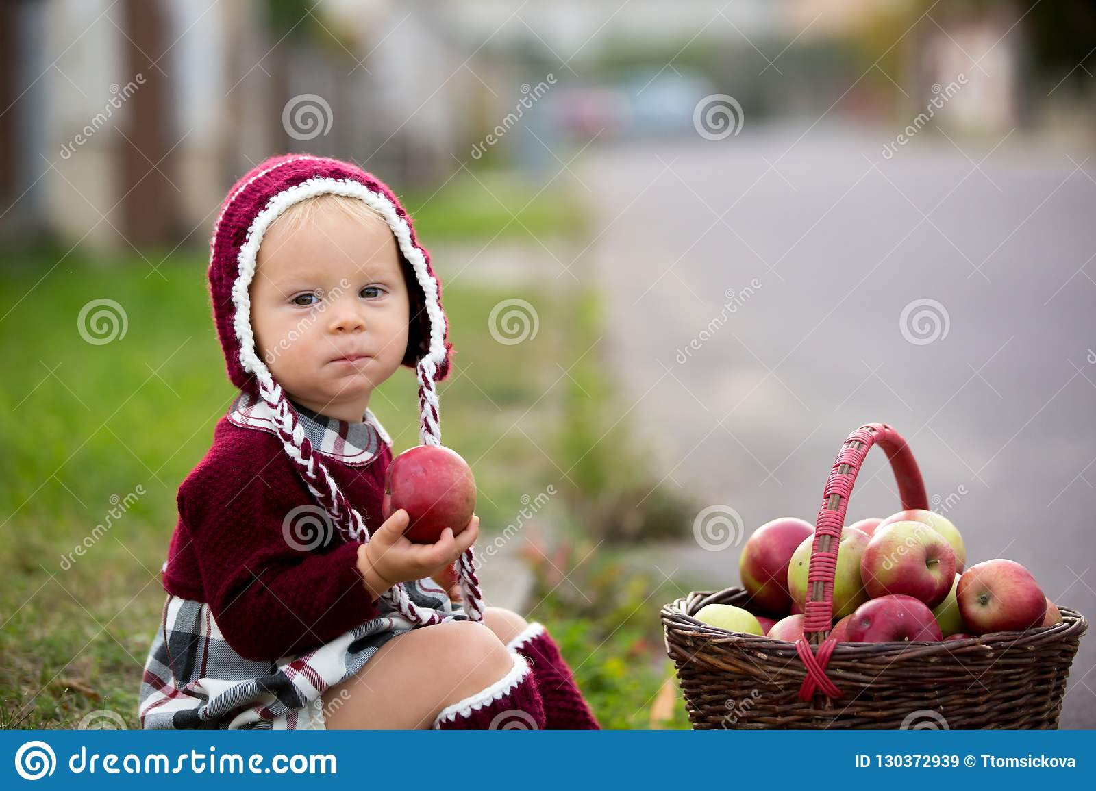Child eating apples in a village in autumn. Little baby boy play