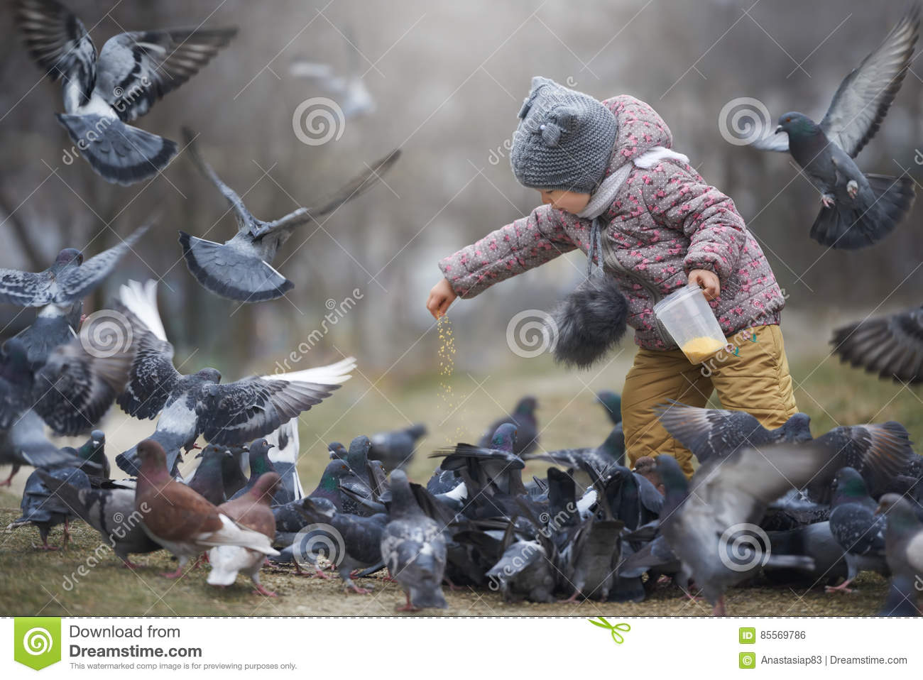 Download Child Feeding A Crowd Of Grey And Two Brown Pigeons Stock Photo - Image of family, active: 85569786