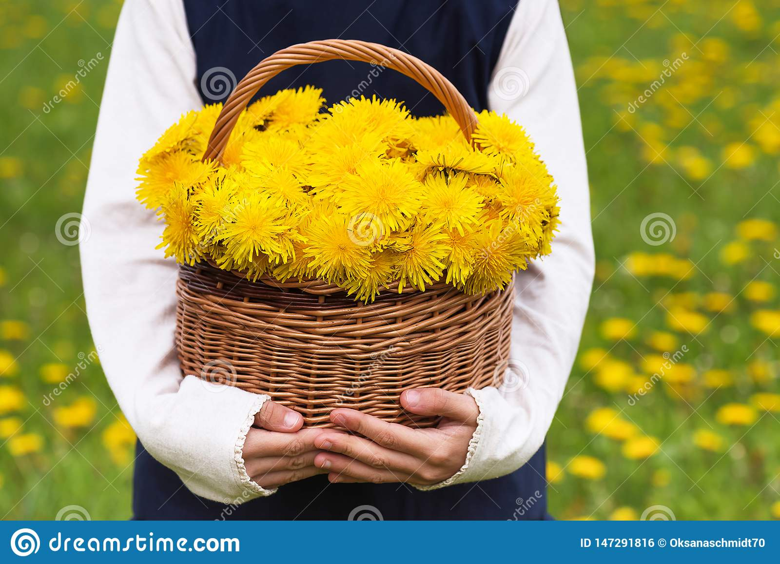 Child holding basket with dandelion yellow flowers.