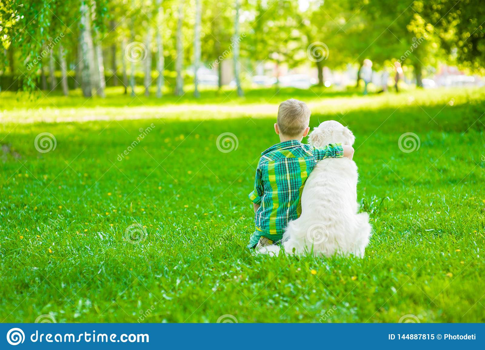 Child hugging golden retriever, sitting with his back to the camera