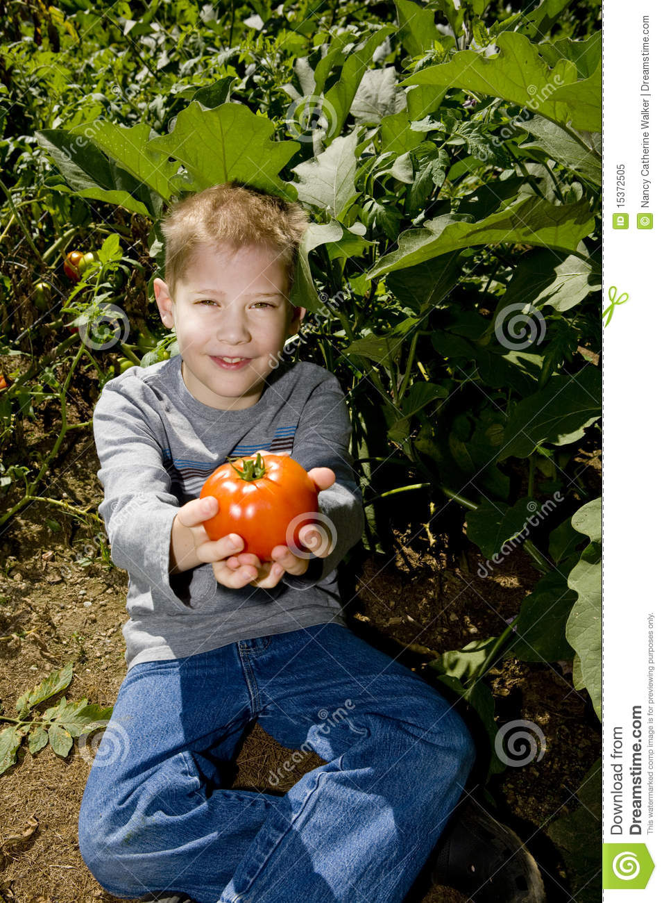Child offers tomato