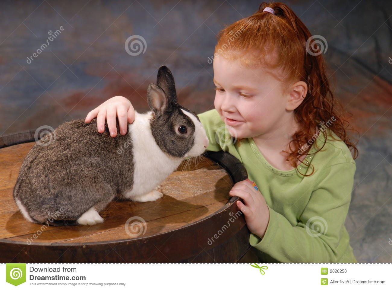 child with pet rabbit stock photo   image 2020250