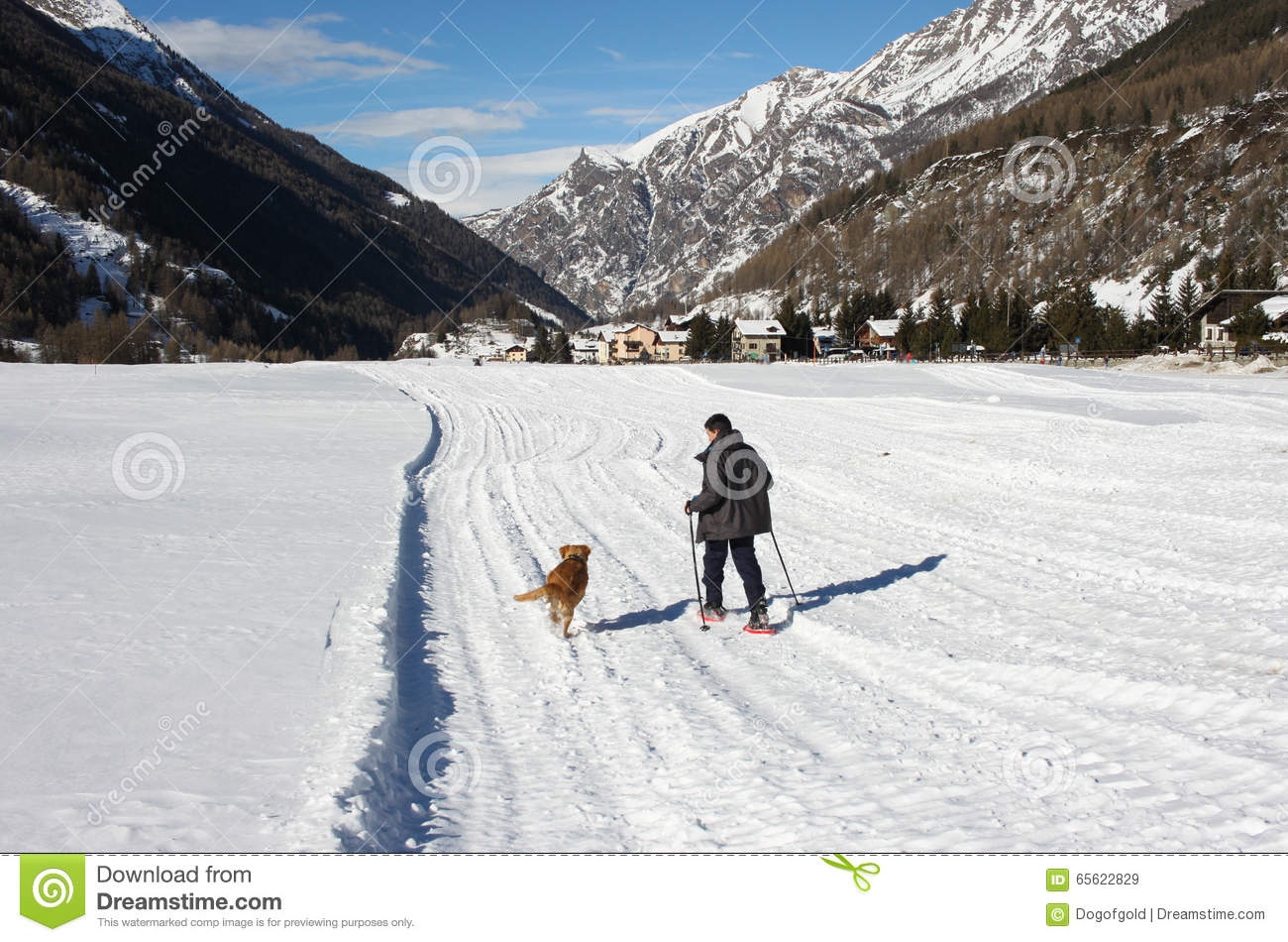 Legs In Snowshoes. Stock Image
