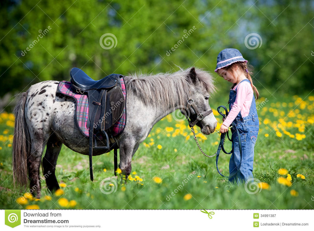 Child Riding A Small Horse Royalty Free Stock Photography - Image ...