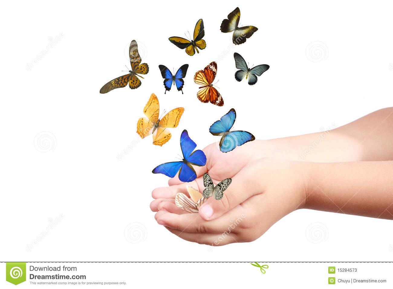 Uncategorized Butterfly Hand childs hand releasing butterflies stock image 15284573 child s butterflies