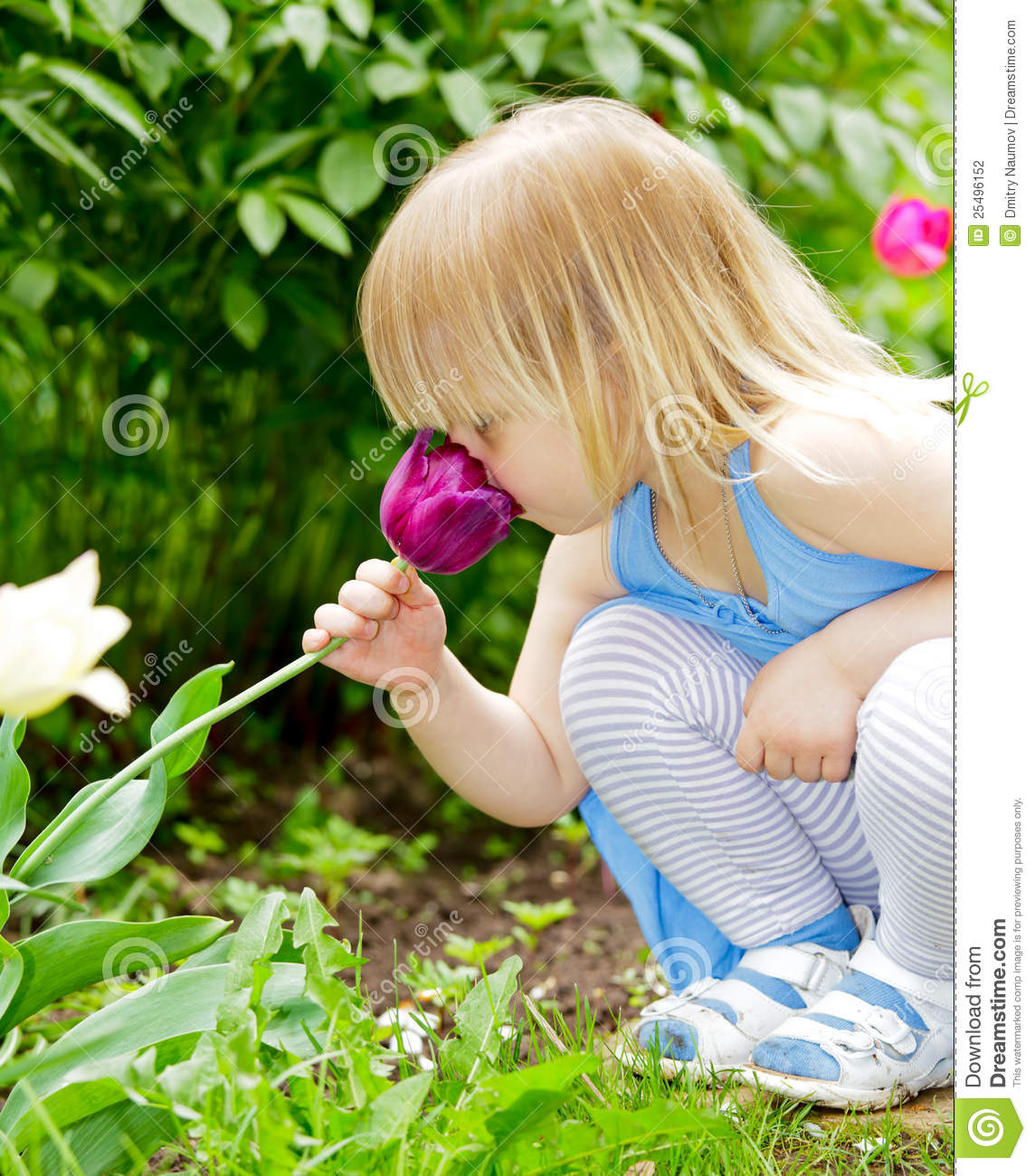 Child Smelling Flower Stock Photo. Image Of Holding, Hand