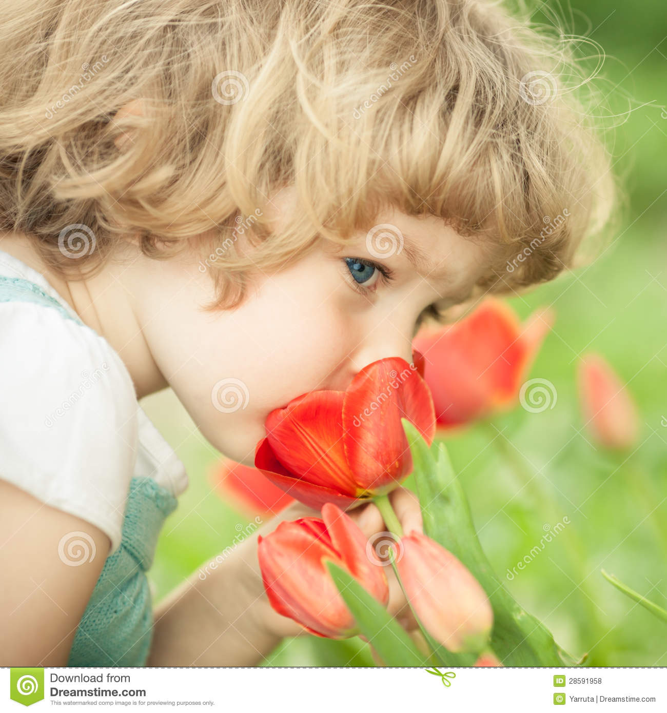 Child Smelling Tulip Royalty Free Stock Photos - Image: 28591958