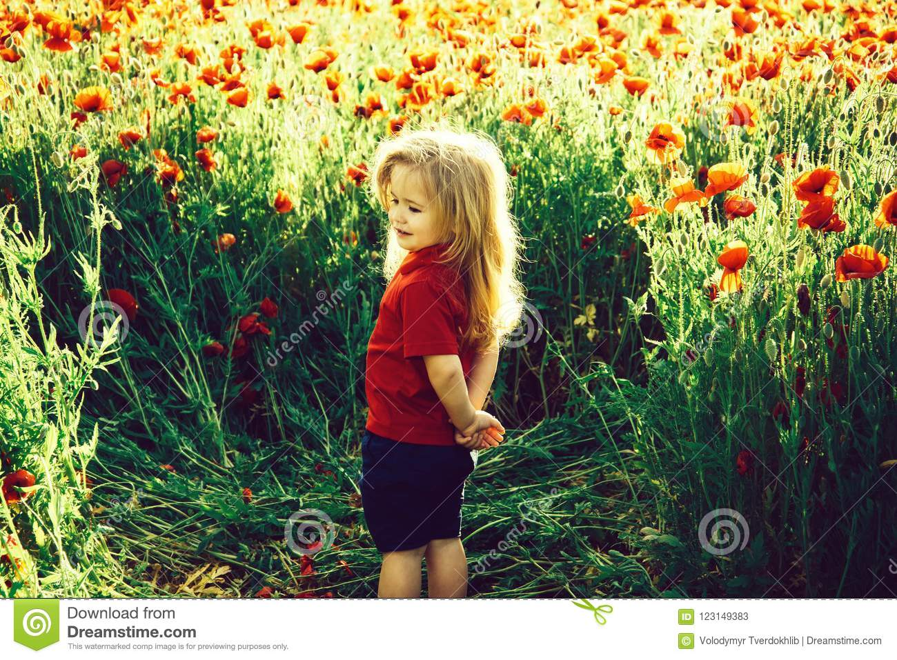 Child or smiling little boy with long blonde hair in red shirt in flower field of poppy with green stem on natural