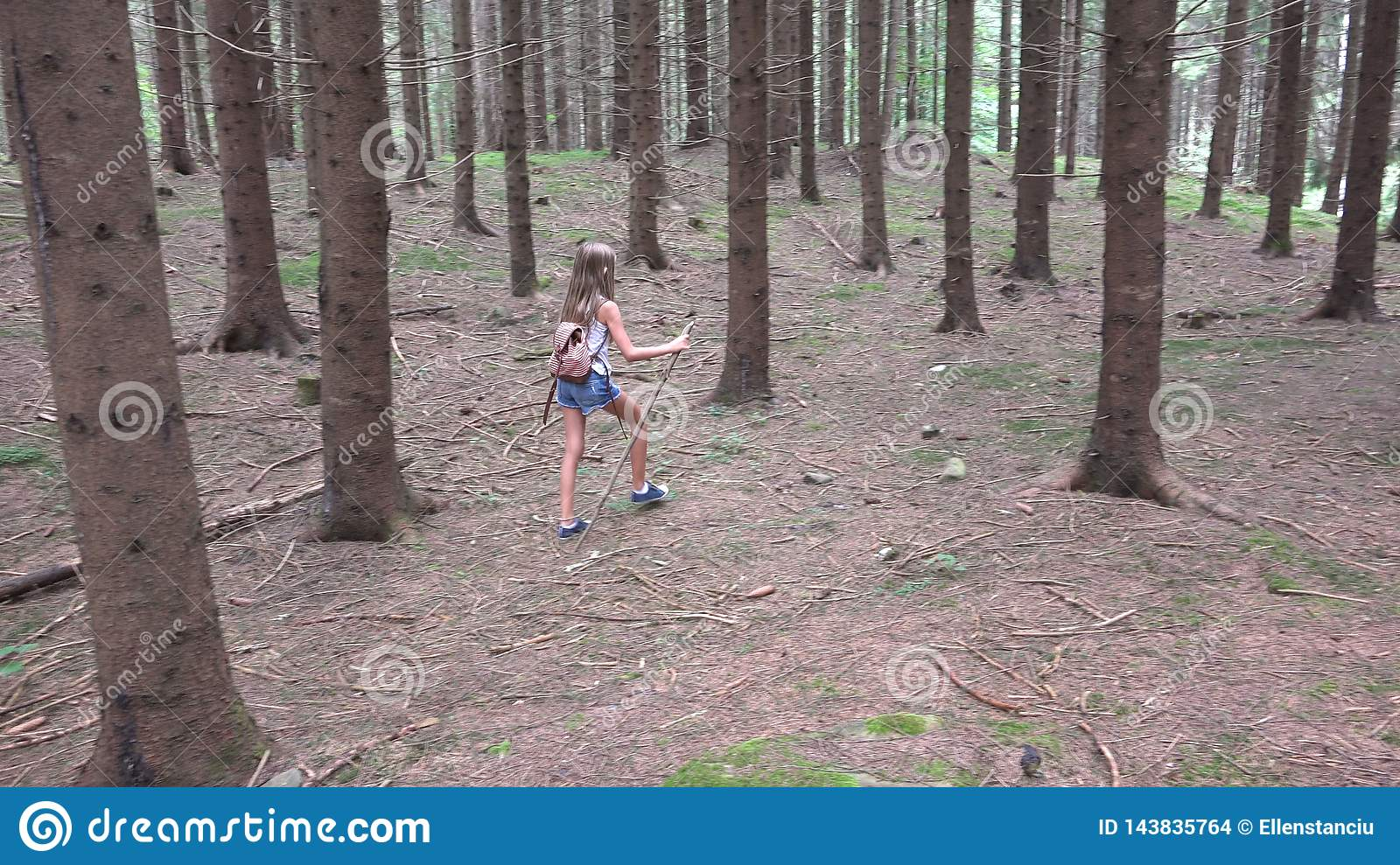 Child Walking in Forest, Kid Outdoor Nature, Girl Playing in Camping Adventure
