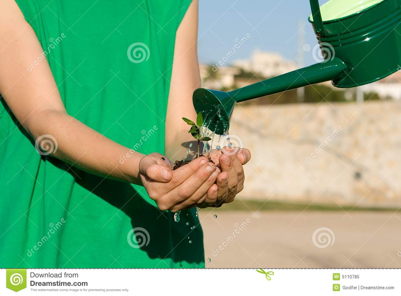 Child watering plant in cupped hand