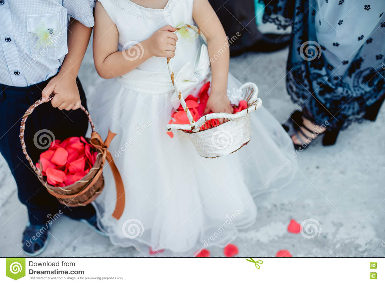 Children With Basket Throwing Rose Petals Stock Image - Image of ...