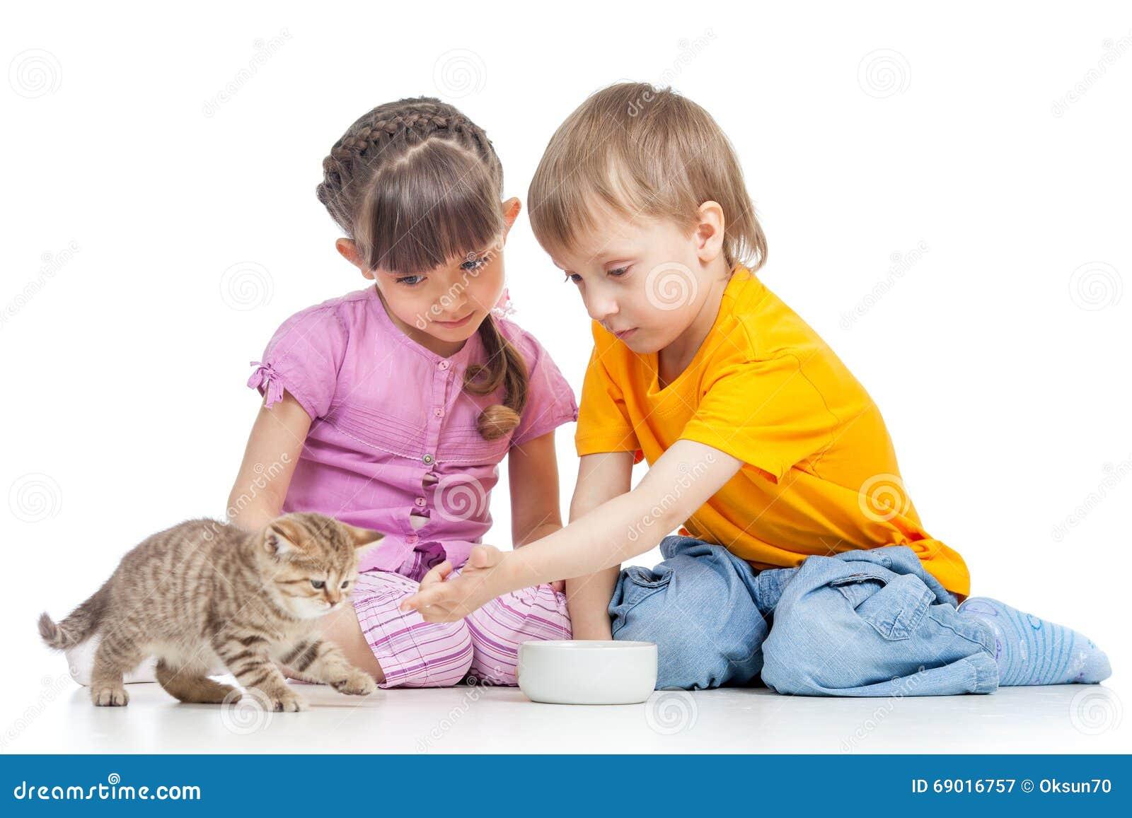 Boy Feeding Cat S