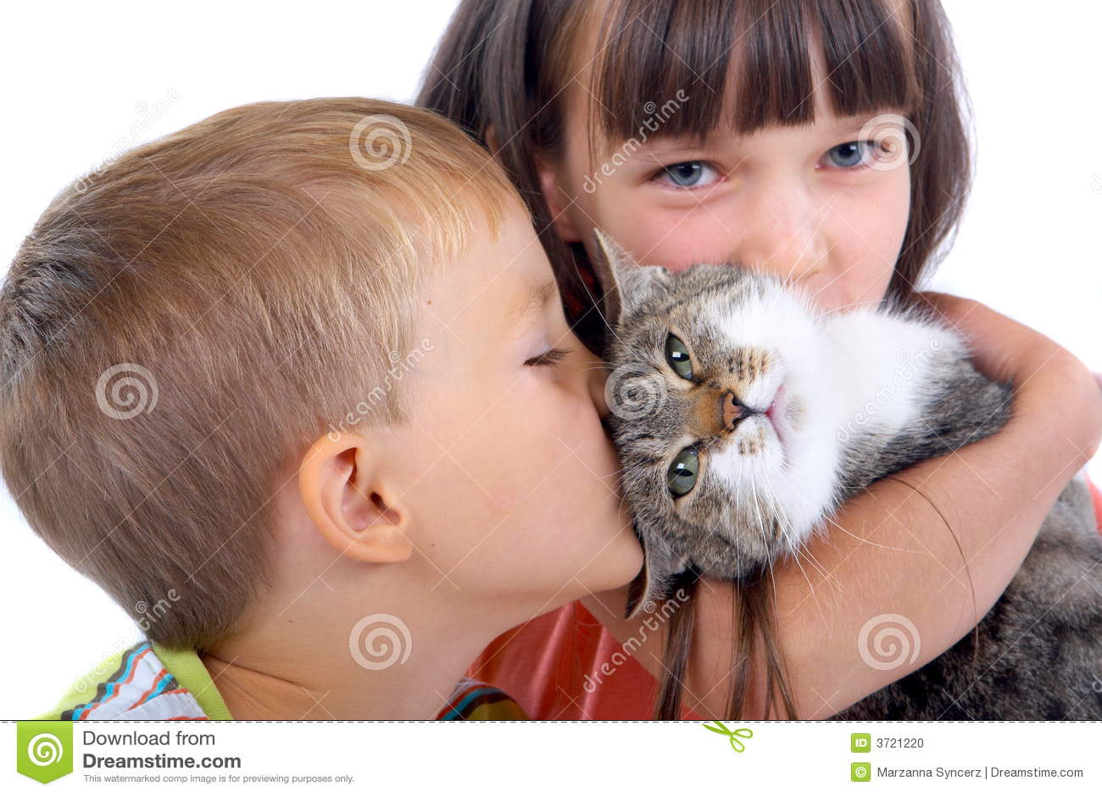 Фотогалерея - Кошки и дети - Забавные фото кошек - CATS -галерея 92