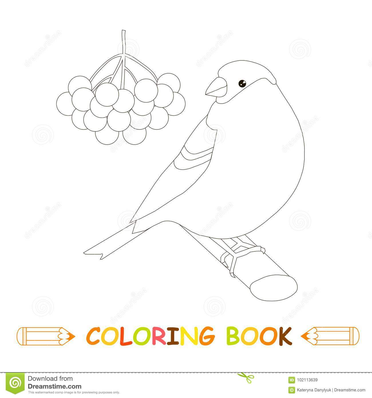 Children Coloring Page Stock Vector Illustration Bullfinch Fruits