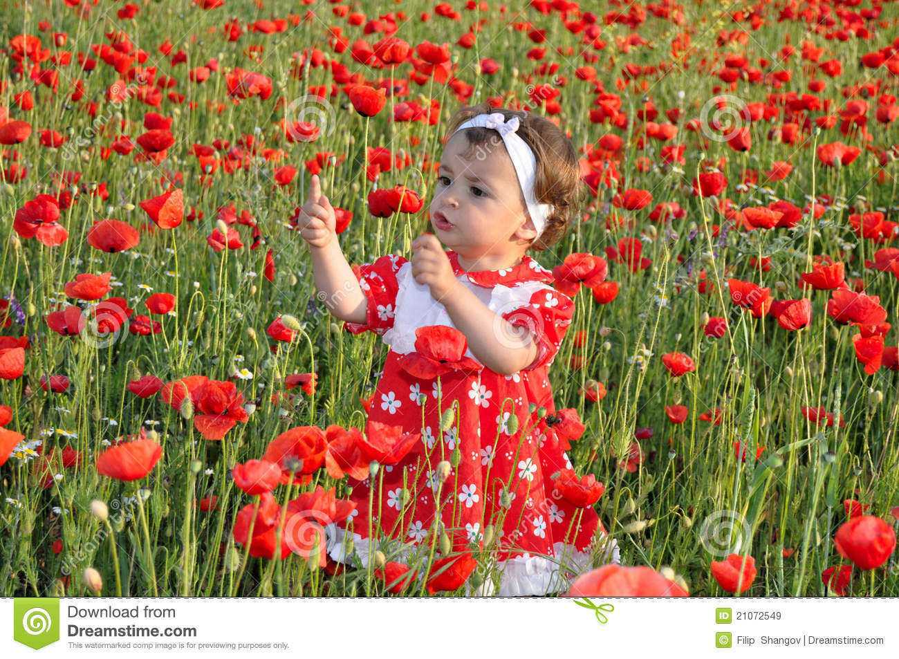 Children Among Flowers Stock Image Image Of Nature Child